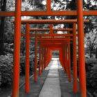 oriental image free 1